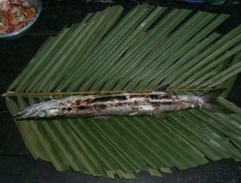 Freshly grilled thai barracuda